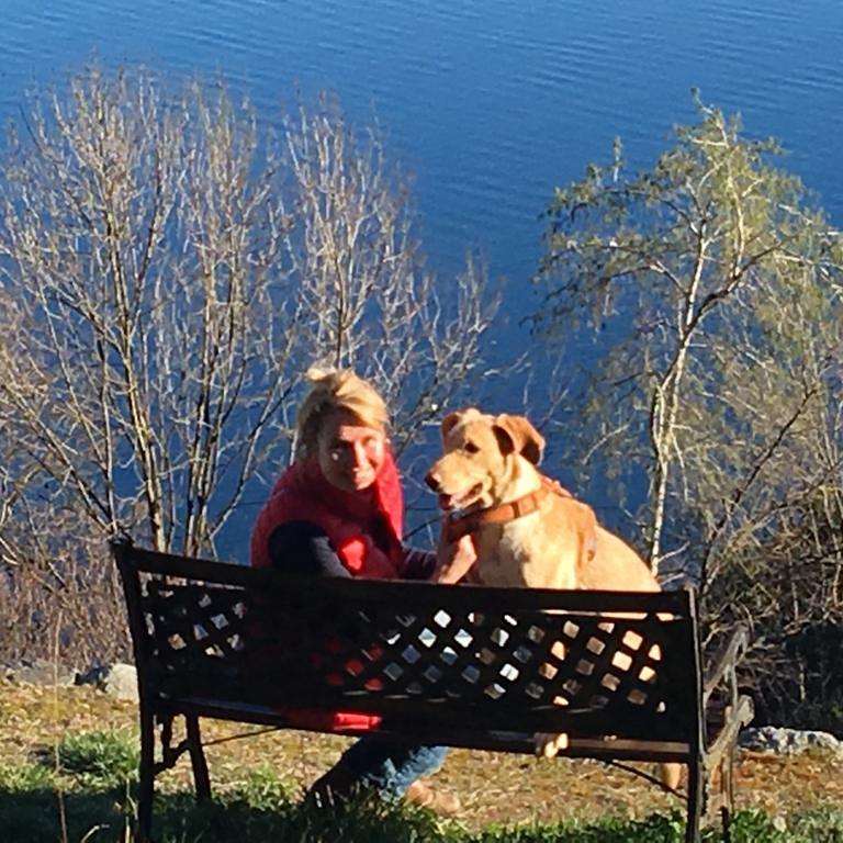Gassi mit Hund